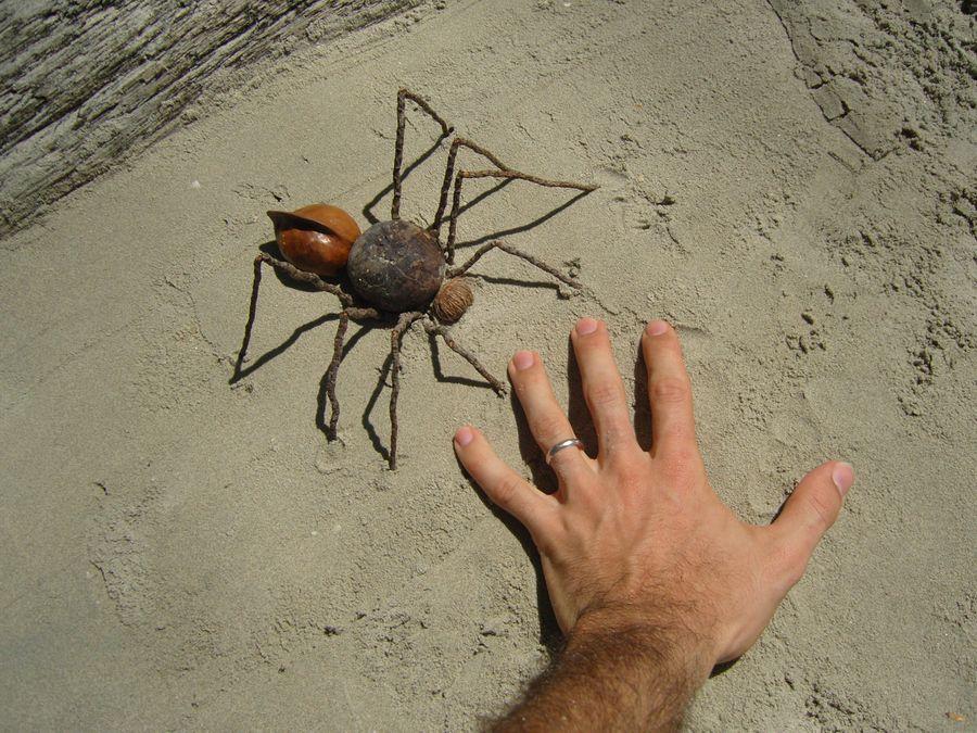 Célèbre Cyrman-le blog: Land-art à la plage XO26